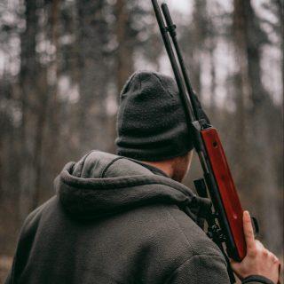 pregledi za držanje i nošenje oružja