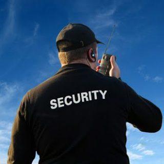 pregledi čuvara i zaštitara